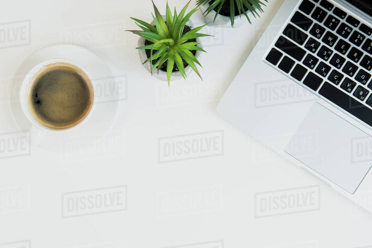 top view of laptop with cup of coffee and plants d2115 24 177