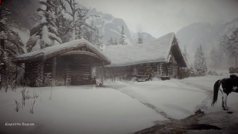 Hayrettin Bayram - Red Dead Redemption 2 Gameplay Photos (Cinematic) Arthur  Morgan Tribute.