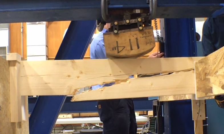 Norway Spruce For Framing Lumber Jlc Online