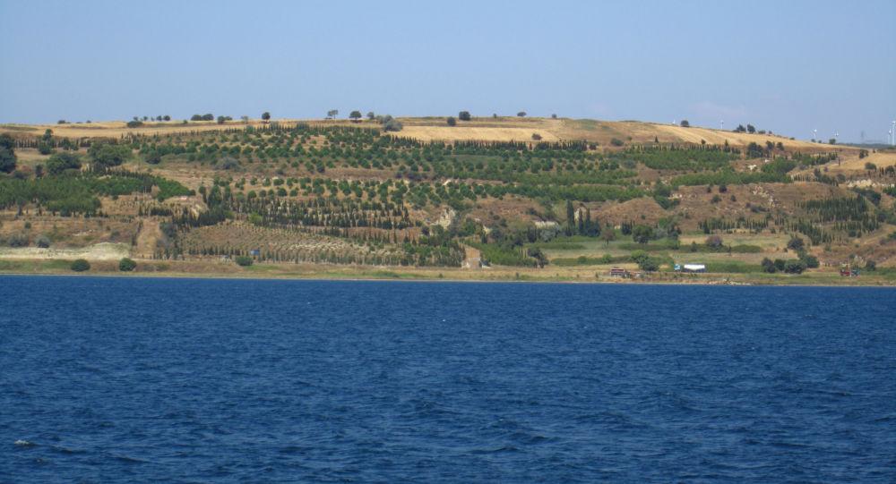 Navigation interdite dans le détroit des Dardanelles en raison d'un incendie important, selon Hürriyet