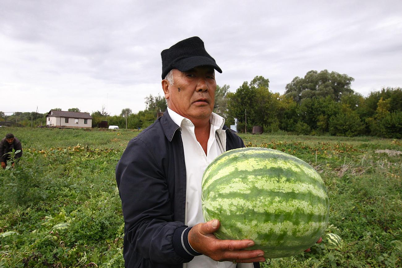 Bagaimana Cara Membuka Peternakan Di Rusia Bagi Warga