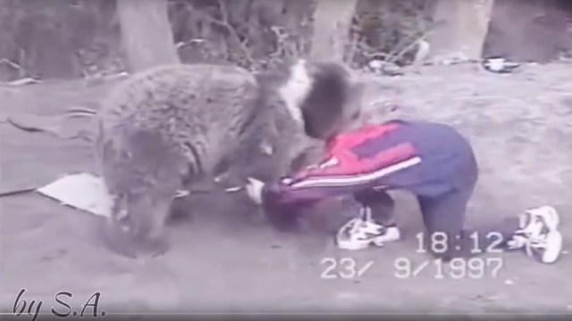 Ya dejaba K.O. a los osos... ¡con 8 años! Así entrenaba el actual campeón ruso del UFC (VIDEO)