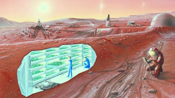"""""""Huesos más densos, miopía y otro color de piel"""": un experto predice las mutaciones de los futuros colonos de Marte"""
