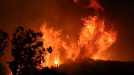 Wildfire in California, US