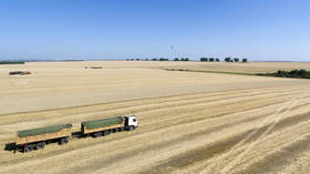 Russia doubles wheat export tax to stabilize domestic food prices
