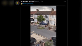 WATCH: Violent winds topple trees & brick walls after 'tornado' rips through London borough