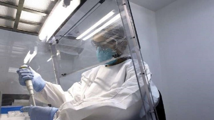 US study: SARS-CoV-2 may have spread undetected two months before cases appeared
