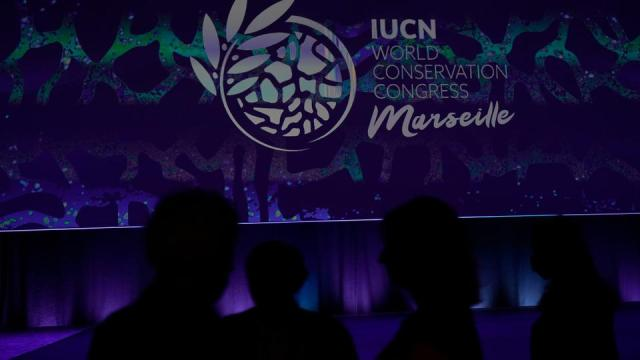Participants are silhouetted during the opening of the IUCN World Conservation Congress in Marseille, southern France on September 3, 2021.