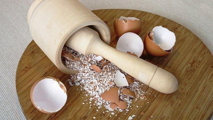 Lëvozhga e vezës, zbuloni përdorimet e shumta të saj - Probleme te ...