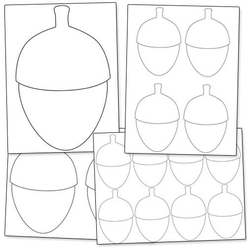image about Acorn Template Printable called Acorn Template. white oak acorns description clean white oak