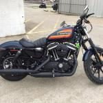 2019 Harley Davidson Sportster Iron 883 For Sale In Decatur Il World Of Powersports Inc