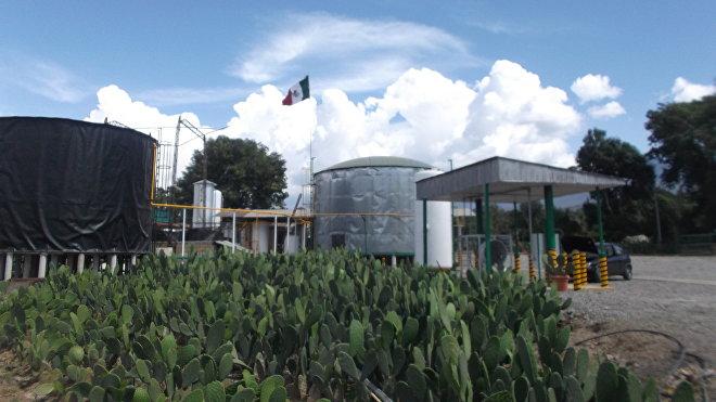 La planta de NopaliMex, que transforma el cactus â??nopalâ?? en energía para usos productivos
