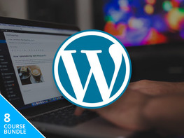 The All-In-One WordPress Business Bundle