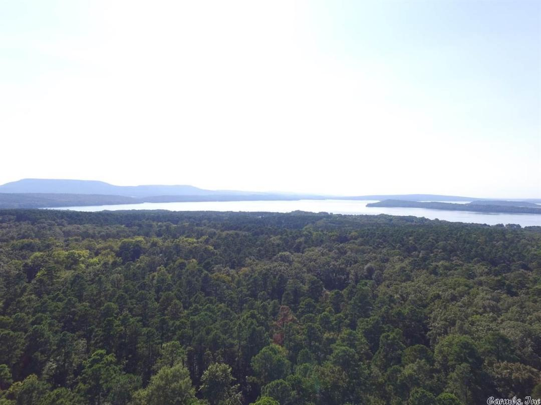 80+/- acres in West Russellville within minutes from the Marina perfect for development. Panoramic views of Lake Dardanelle. Restricted showing times in fall and winter months.