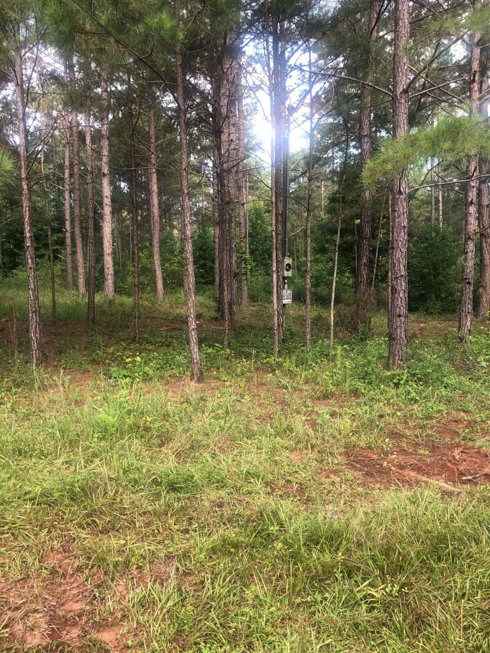 Property for sale at 0 GOOLSBY ROAD, Monticello,  Georgia 31064