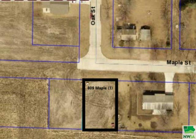 Property for sale at 809 Maple Unit: Street, Salix,  IA 51052