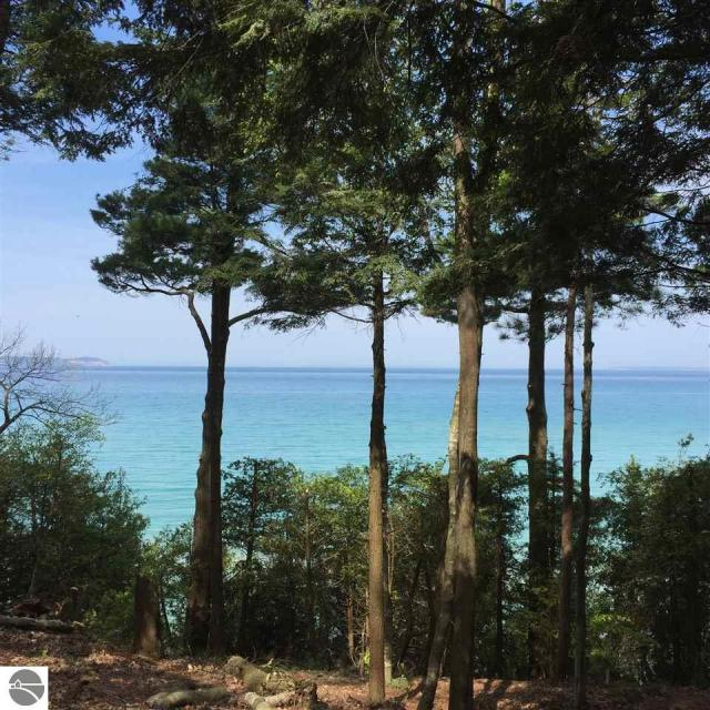 Property for sale at N Birdsong Road, Leland,  MI 49654