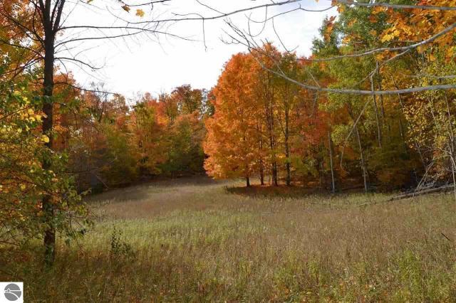 Property for sale at S Cedar Road, Cedar,  MI 49621