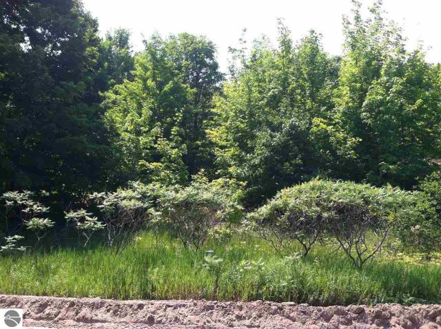 Property for sale at Lot 28 S Sugar Loaf Mountain Road, Maple City,  MI 49664