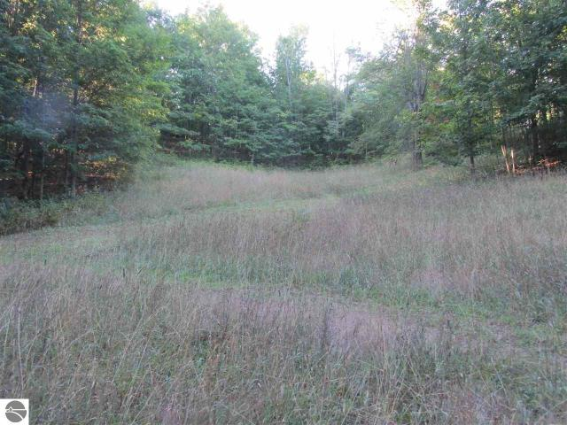 Property for sale at E Gallivan Road, Cedar,  MI 49621