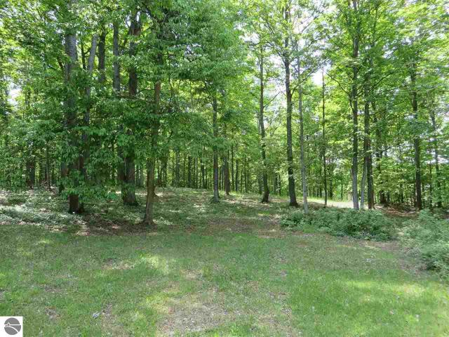 Property for sale at W Beech Bark Trail, Maple City,  MI 49664