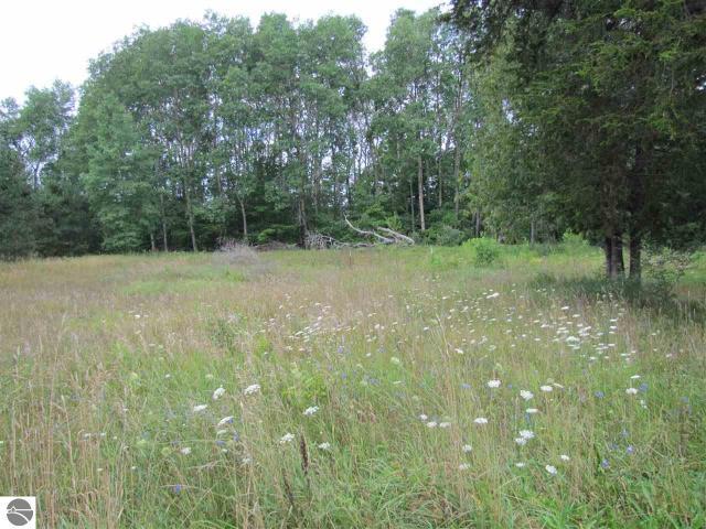 Property for sale at S Cedar Run Road, Cedar,  MI 49684