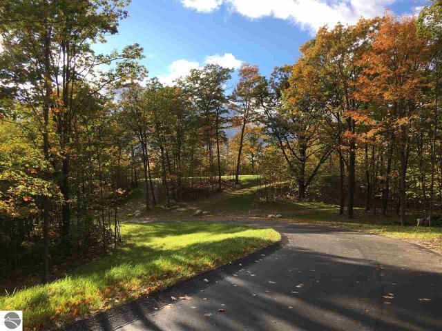 Property for sale at 3081 E Greenwood Road, Lake Leelanau,  MI 49653