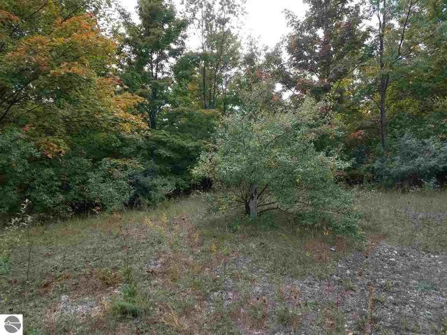 Property for sale at Parcel 4&5 E Meander Lane, Cedar,  MI 49621
