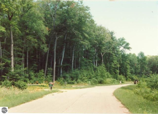 Property for sale at Parcel 5 N Trillium Drive, Leland,  MI 49654