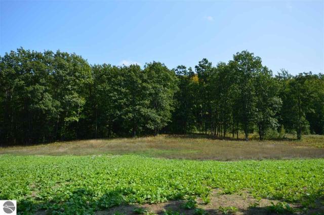 Property for sale at N Hoeft Road, Lake Leelanau,  MI 49653