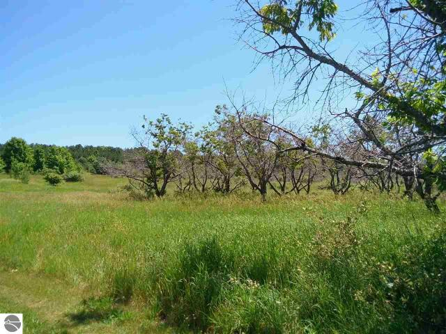 Property for sale at S French Road, Lake Leelanau,  MI 49653