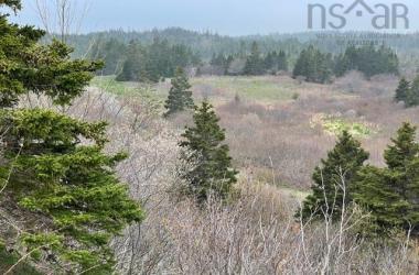 Cape Laronde Road, Poirierville, NS B0E 1K0, ,Vacant Land,For Sale,Cape Laronde Road,202019383