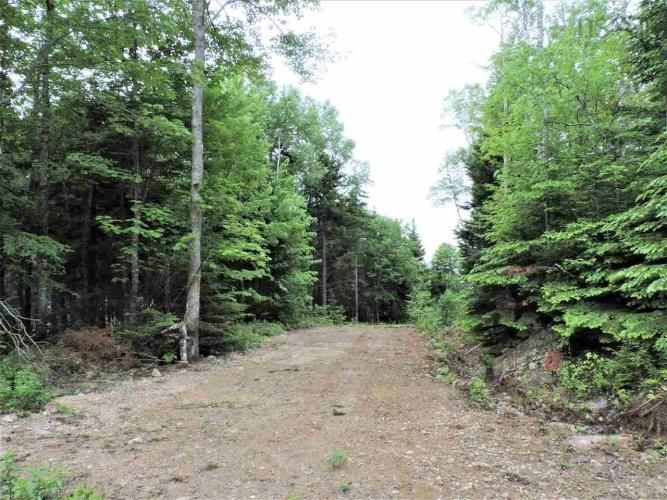 396 Moose Creek River Road, Moose River, NS B0M 1S0, ,Vacant Land,For Sale,396 Moose Creek River Road,202100167