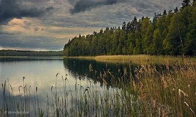 "State Landscape Reserve ""Blue Lakes"", Minsk region, Belarus. by theoherbots"