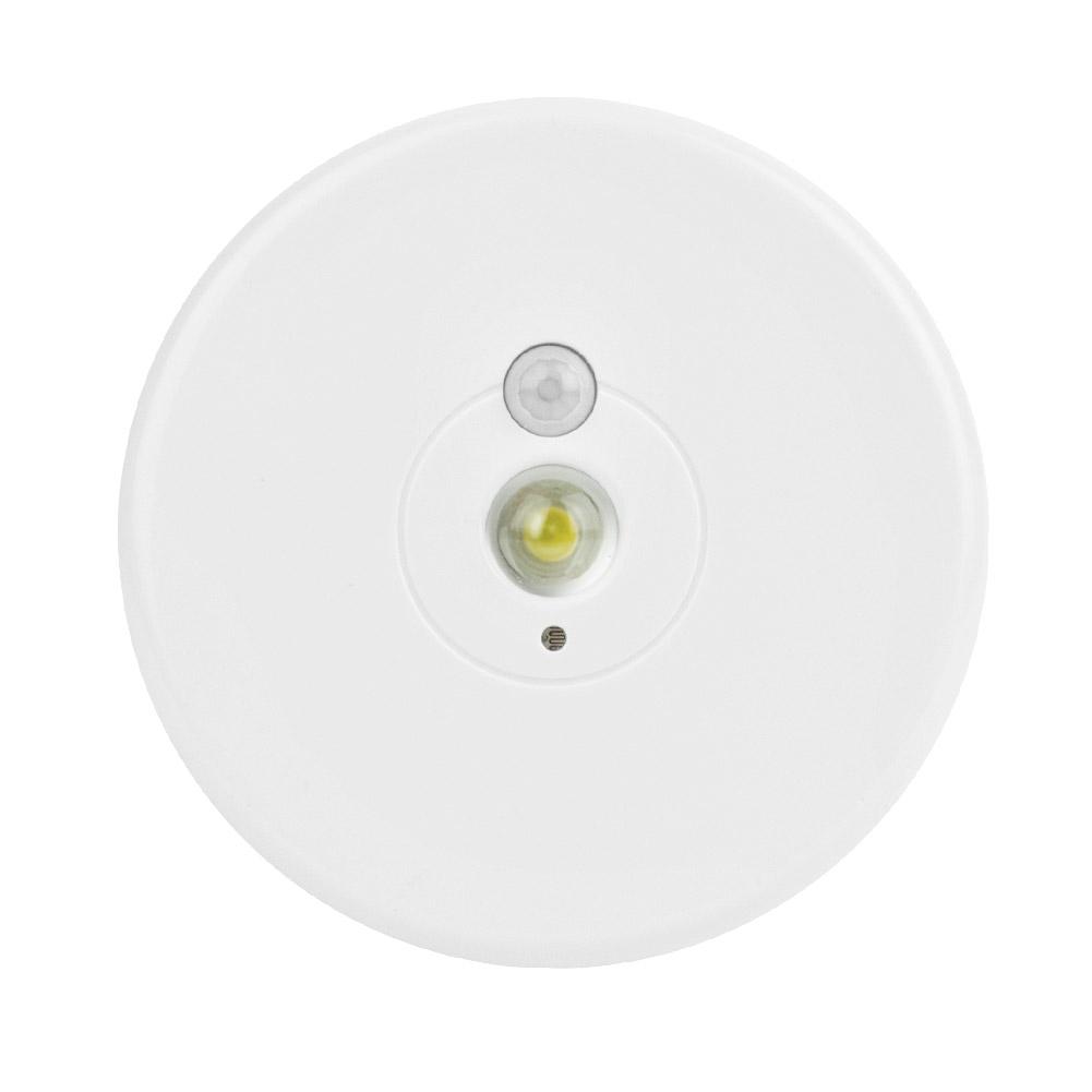 Rite Lite Wireless Picture Light