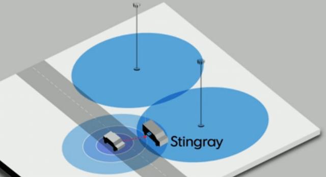 stingray-use
