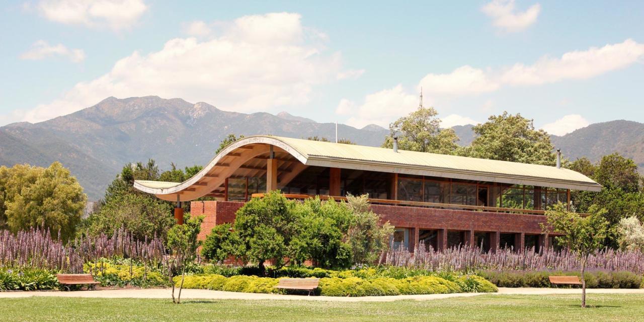 Vinícola Emiliana: a maior produtora de vinhos orgânicos do Chile!