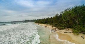 O que fazer em Bocas del Toro: Red Frog Beach