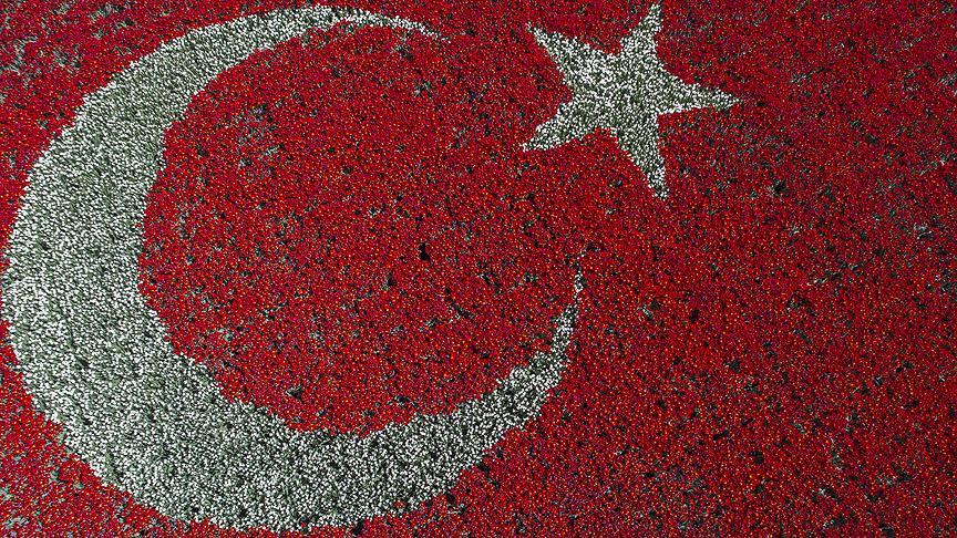 Картинки по запросу en büyük Türk Bayrağı