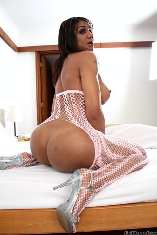 Shemale Ass Big Tits