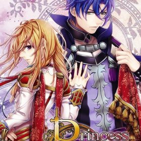 The cover art of the game Princess Arthur.