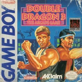 The cover art of the game Double Dragon 3 .