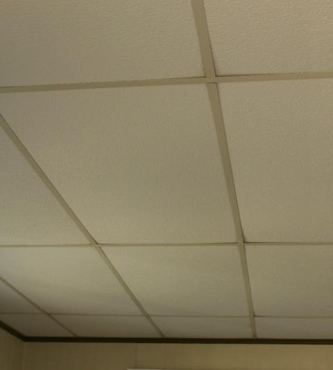Replacing Drop Down Ceiling in Living Room