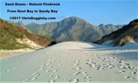 14 Sand Dune Fire Break Saves Llandudno See Photo Blog Article Sensational Images of Blazing Cape Town Mountain at ChrisDugglebydotcom DSCF0213 (2)