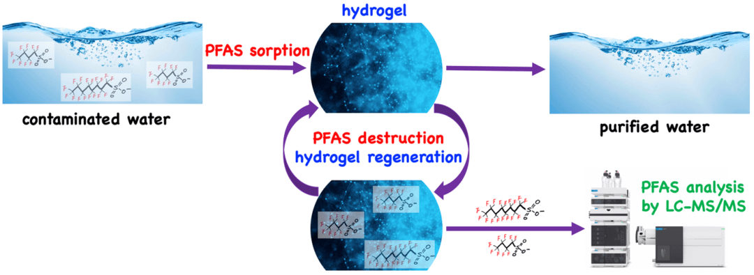 Conceptual treatment process for removing and degrading PFAS in polluted water.
