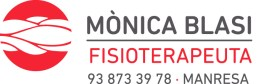 BLASI logo 2B