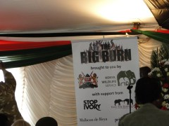 30/4/2016 Launch of the Big Burn...Nairobi National Park.