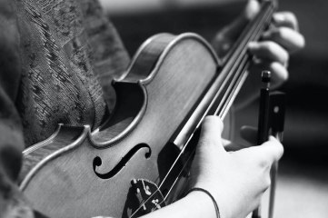 photo of hands holding violin