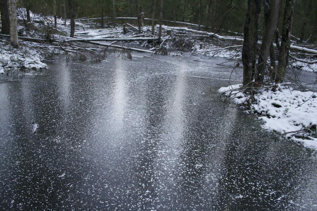 photo of frozen pond