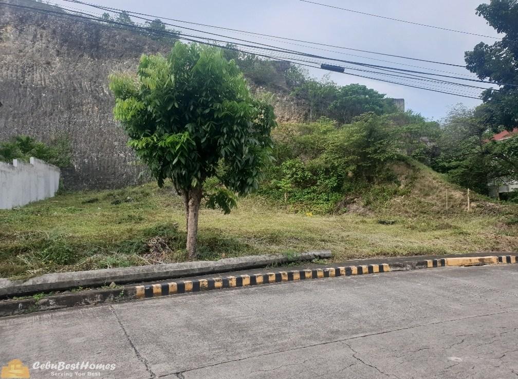 Lot for Sale in Royale Cebu Consolacion